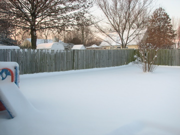 backyardsnow.JPG